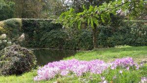 Hindringham House gardens