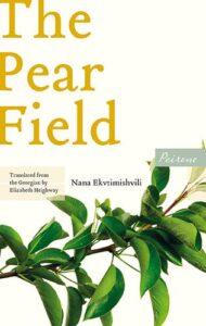 Cover image for The Pear Field by Nana Ekvtimishvili