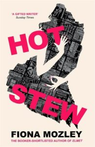 Cover image for Hot Stew by Fiona Mozley