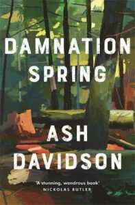 Cover image for Damnation Spring by Ash Davidson