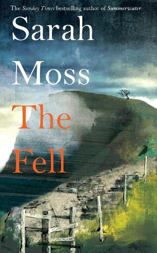 Cover image for The Fell by Sarah Moss